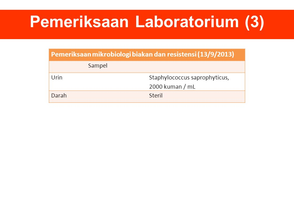 Pemeriksaan Laboratorium (3)