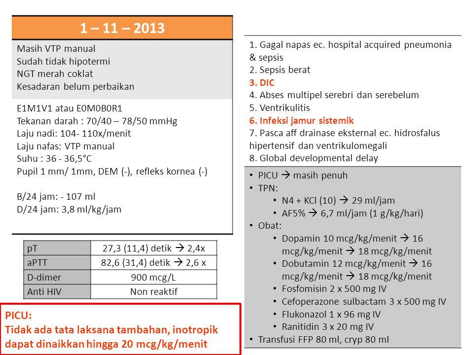 1 – 11 – 2013 Masih VTP manual. Sudah tidak hipotermi. NGT merah coklat. Kesadaran belum perbaikan.