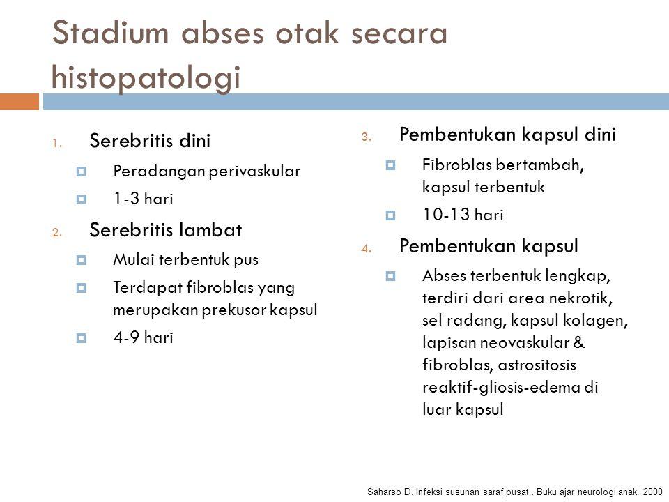Stadium abses otak secara histopatologi
