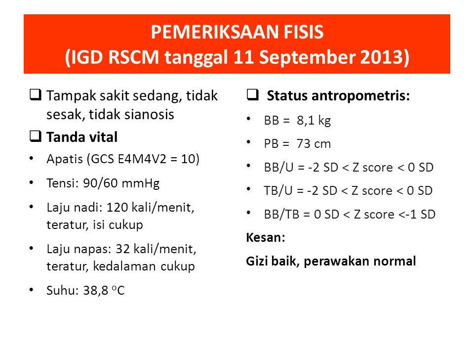 PEMERIKSAAN FISIS (IGD RSCM tanggal 11 September 2013)