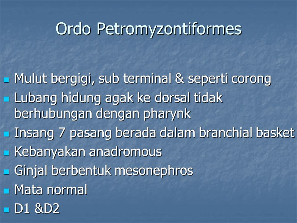 Ordo Petromyzontiformes