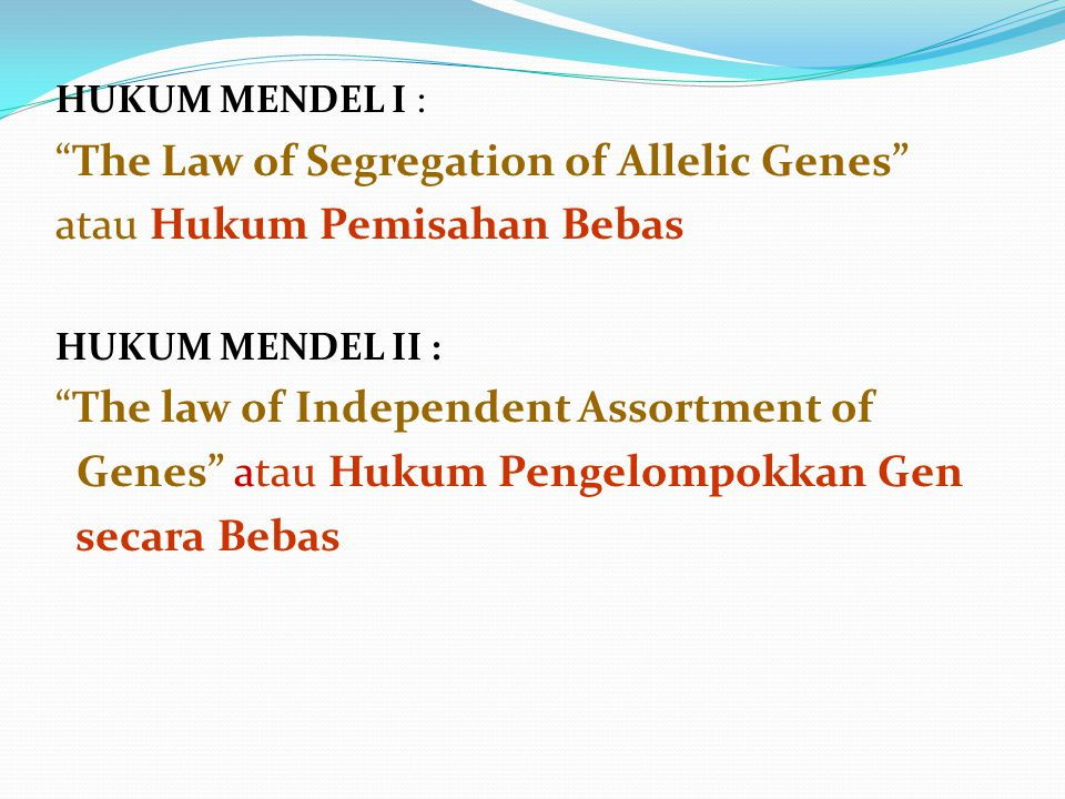 The Law of Segregation of Allelic Genes atau Hukum Pemisahan Bebas