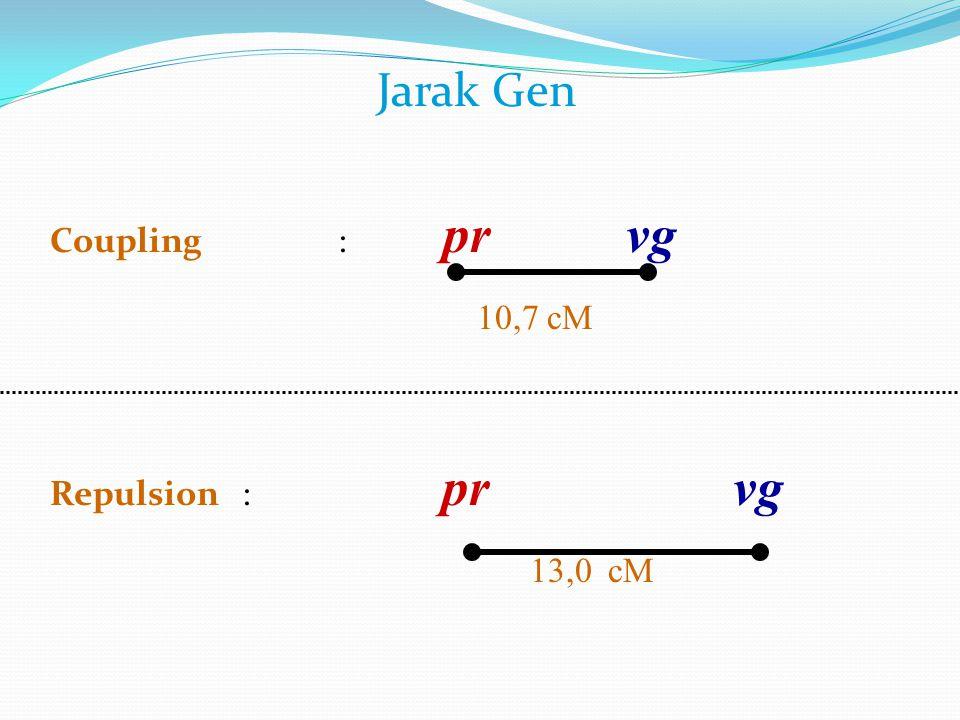 Jarak Gen Coupling : pr vg 10,7 cM Repulsion : pr vg 13,0 cM