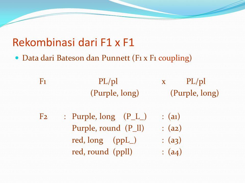 Rekombinasi dari F1 x F1 Data dari Bateson dan Punnett (F1 x F1 coupling) F1 PL/pl x PL/pl.