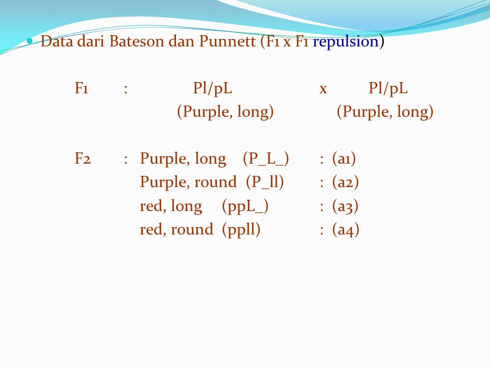 Data dari Bateson dan Punnett (F1 x F1 repulsion)