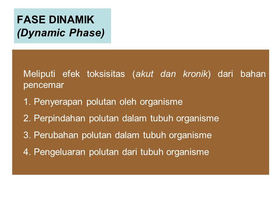 FASE DINAMIK (Dynamic Phase)