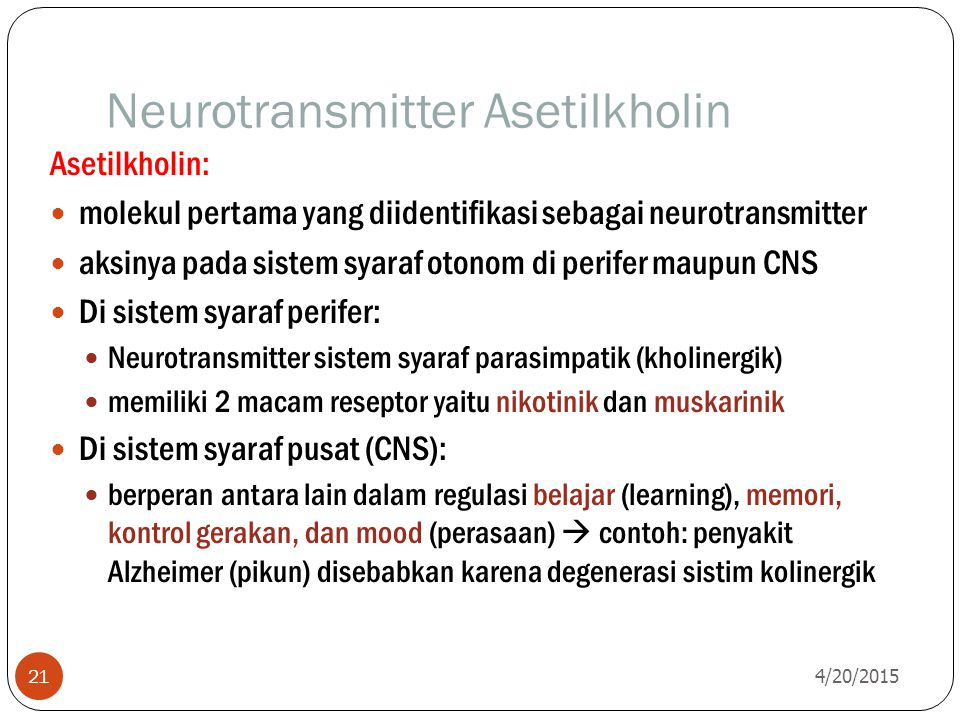 Neurotransmitter Asetilkholin
