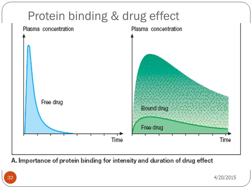 Protein binding & drug effect