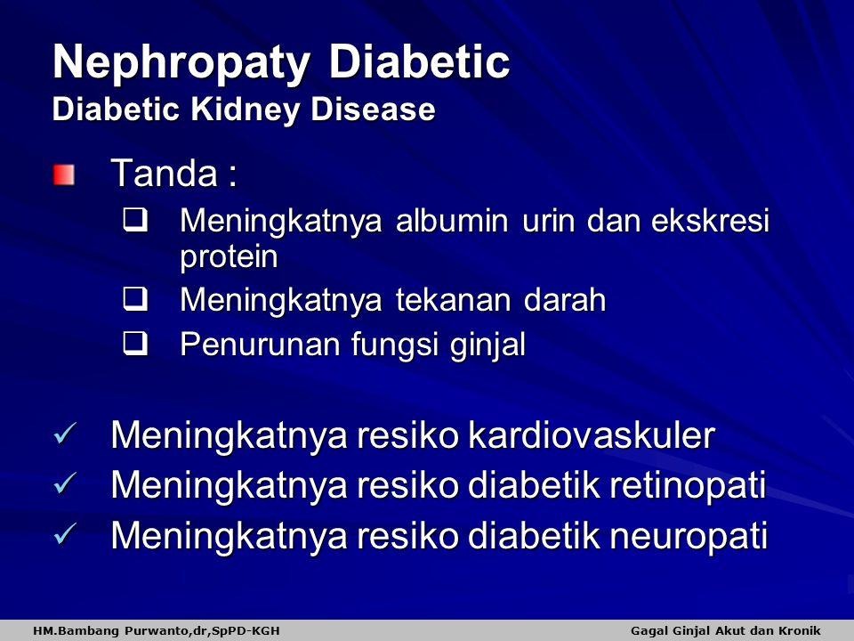 Nephropaty Diabetic Diabetic Kidney Disease