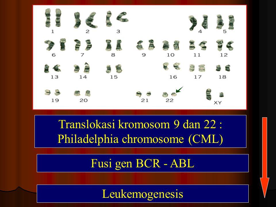 Translokasi kromosom 9 dan 22 : Philadelphia chromosome (CML)