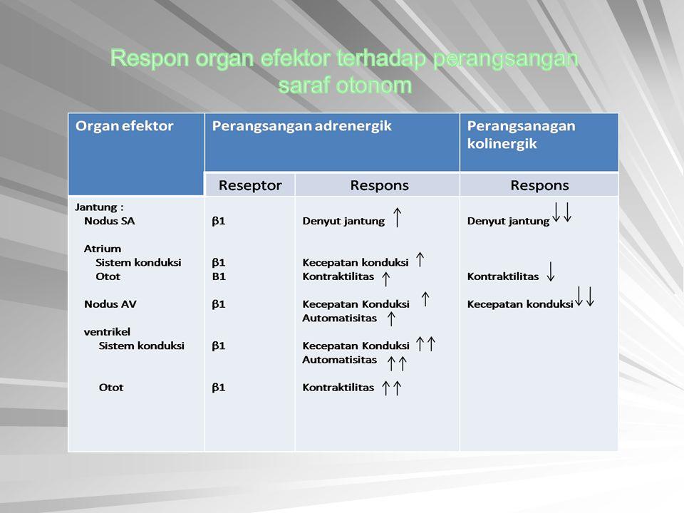 Respon organ efektor terhadap perangsangan saraf otonom