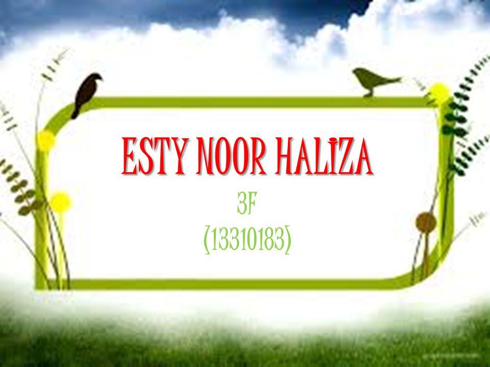ESTY NOOR HALIZA 3F (13310183)