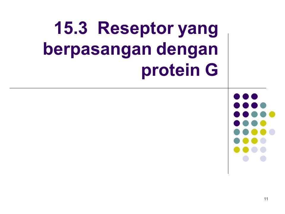 15.3 Reseptor yang berpasangan dengan protein G