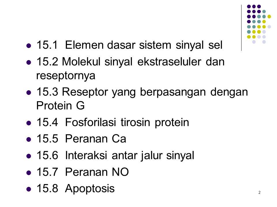 15.1 Elemen dasar sistem sinyal sel