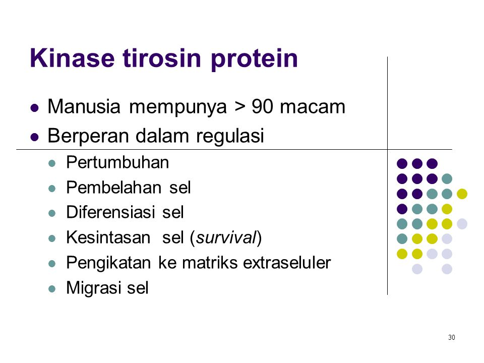 Kinase tirosin protein
