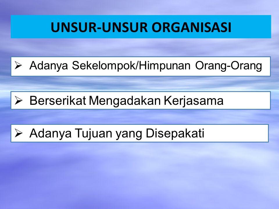 UNSUR-UNSUR ORGANISASI