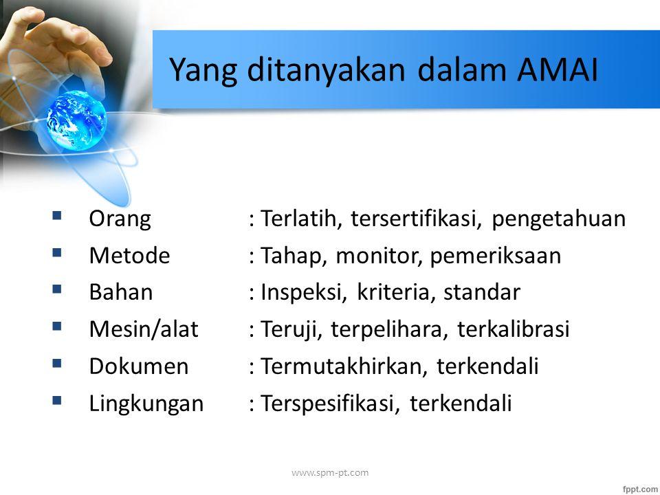 Yang ditanyakan dalam AMAI