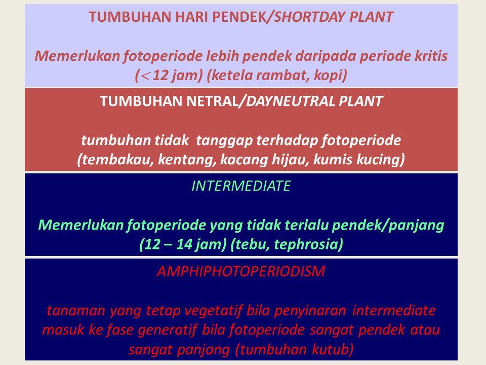 TUMBUHAN HARI PENDEK/SHORTDAY PLANT