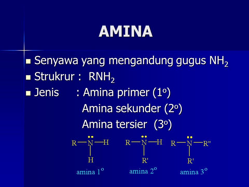 AMINA Senyawa yang mengandung gugus NH2 Strukrur : RNH2