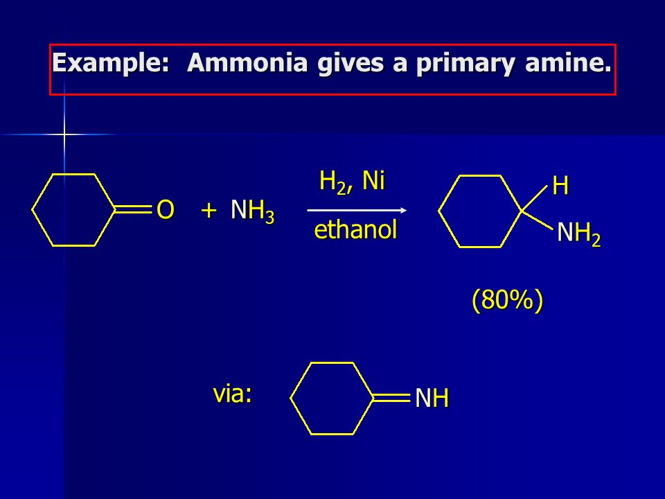 Example: Ammonia gives a primary amine.