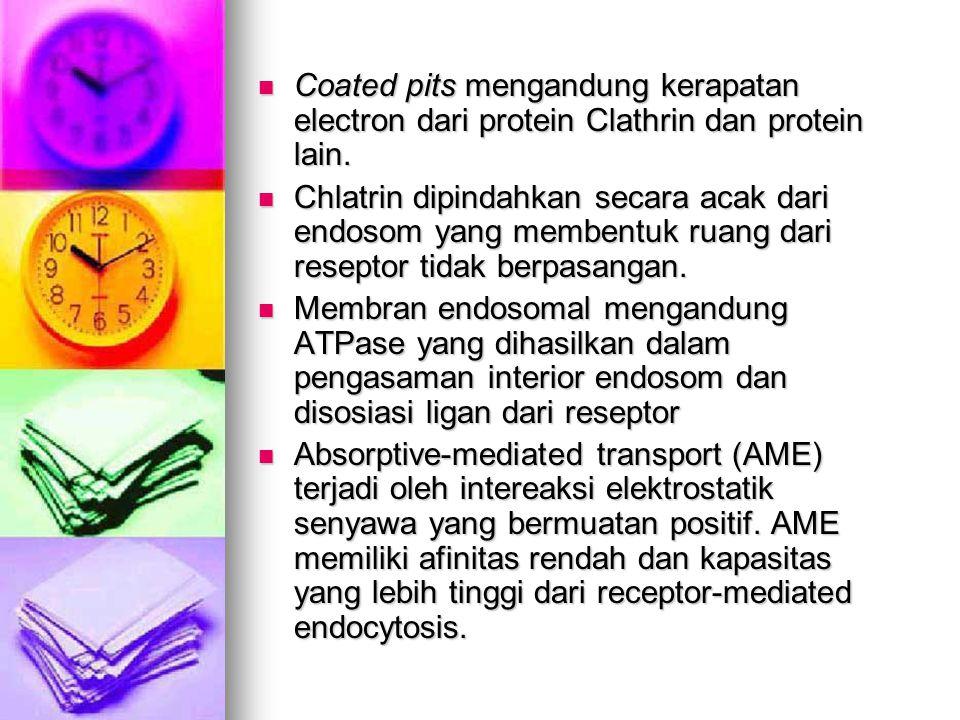 Coated pits mengandung kerapatan electron dari protein Clathrin dan protein lain.