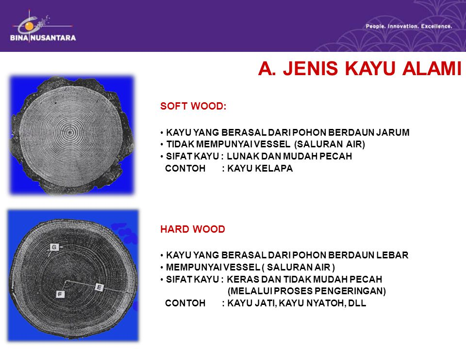 A. JENIS KAYU ALAMI SOFT WOOD: HARD WOOD