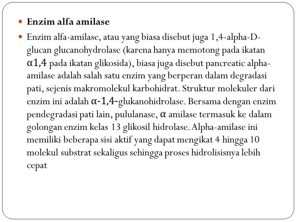 Enzim alfa amilase