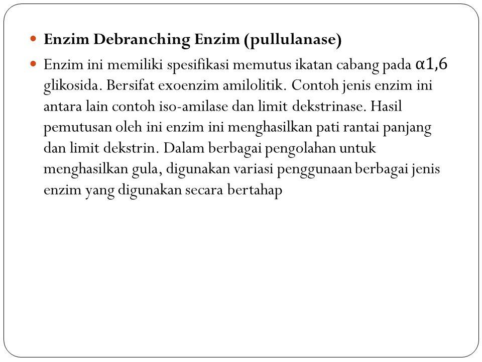 Enzim Debranching Enzim (pullulanase)