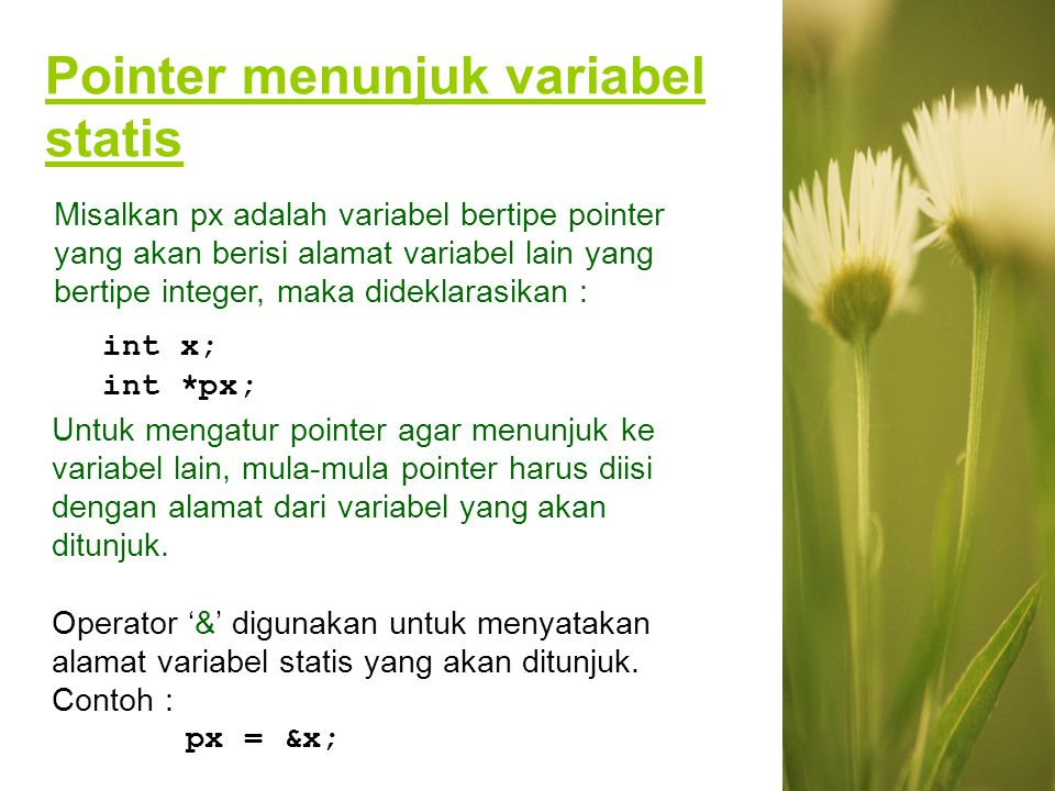 Pointer menunjuk variabel statis