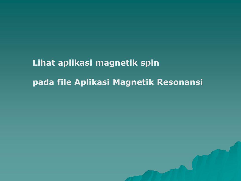 Lihat aplikasi magnetik spin