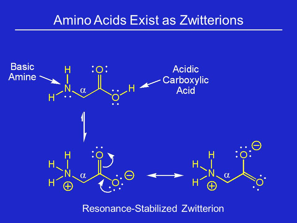 Amino Acids Exist as Zwitterions