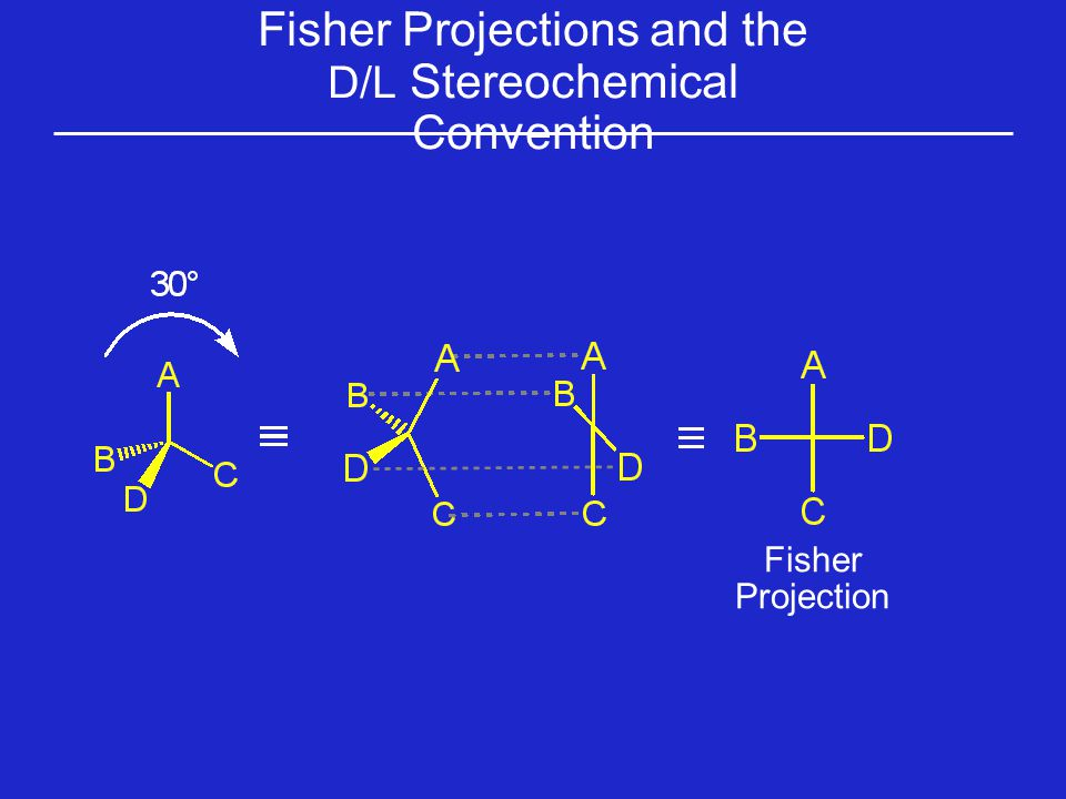 Fisher Projections and the D/L Stereochemical Convention