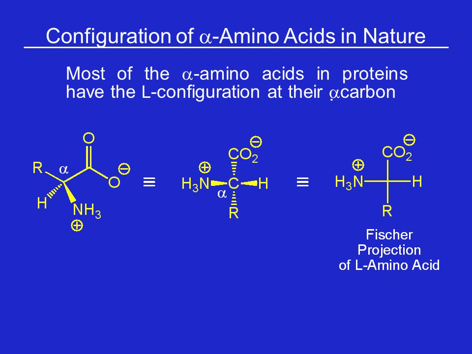 Configuration of a-Amino Acids in Nature