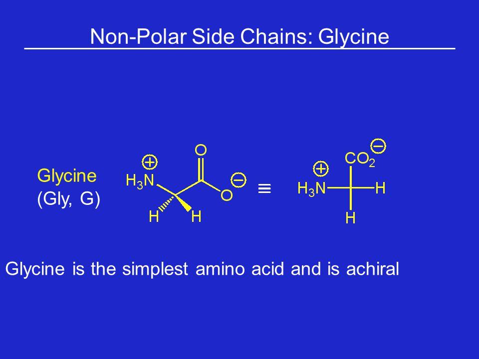 Non-Polar Side Chains: Glycine