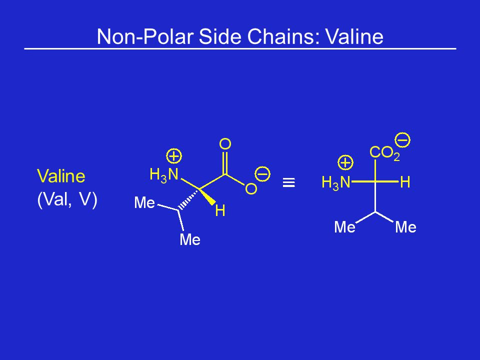 Non-Polar Side Chains: Valine