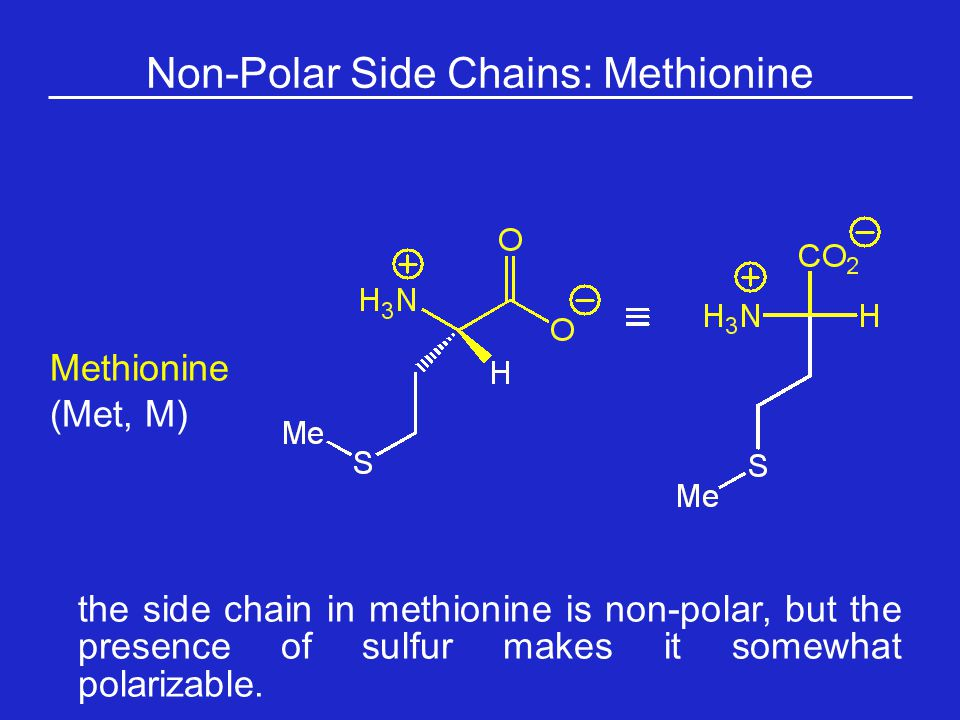 Non-Polar Side Chains: Methionine