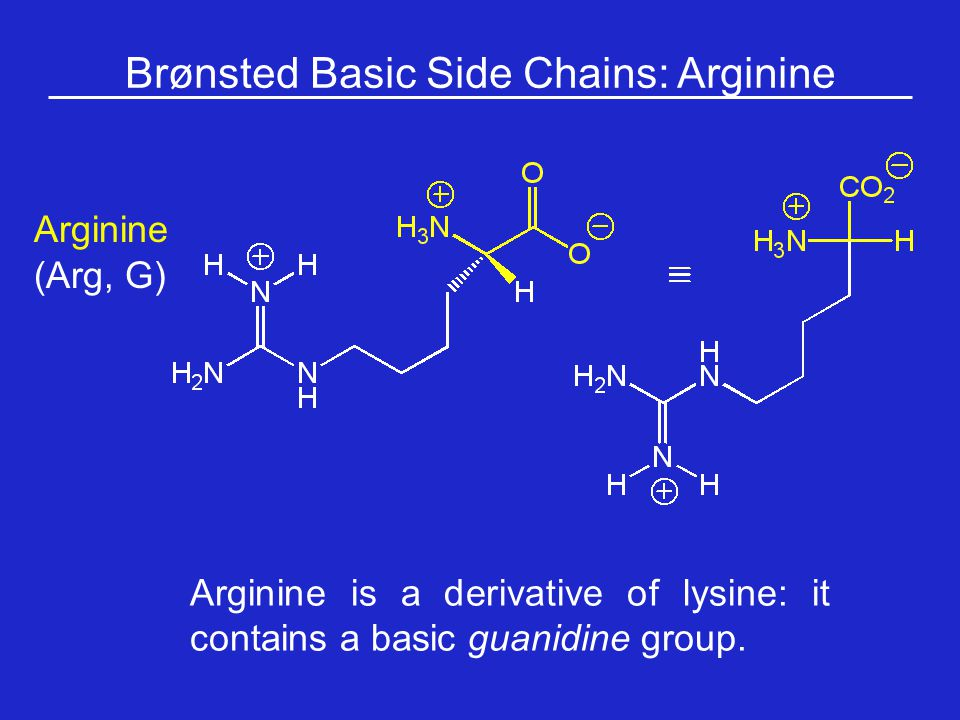 Brønsted Basic Side Chains: Arginine