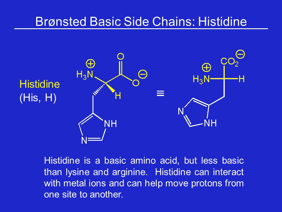 Brønsted Basic Side Chains: Histidine