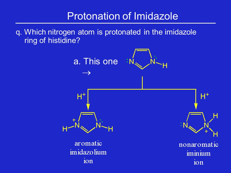 Protonation of Imidazole