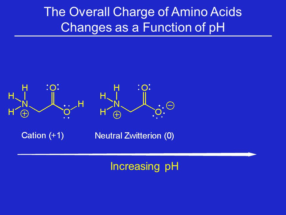 The Overall Charge of Amino Acids Changes as a Function of pH