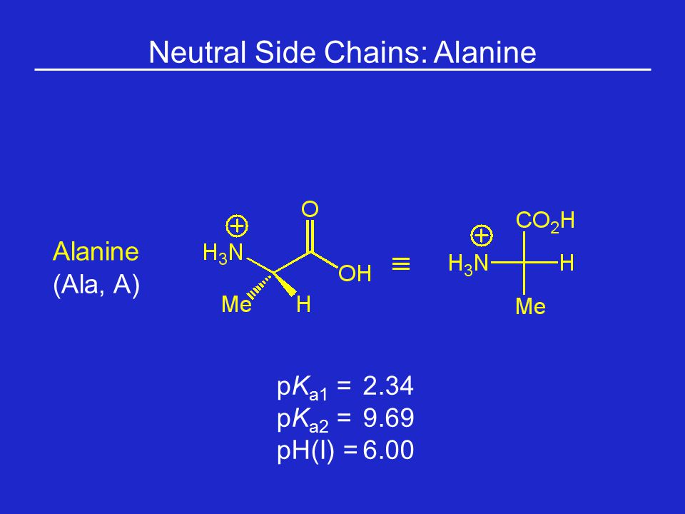Neutral Side Chains: Alanine
