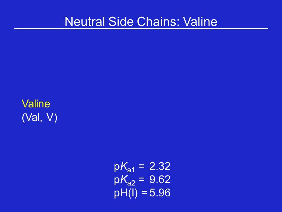 Neutral Side Chains: Valine