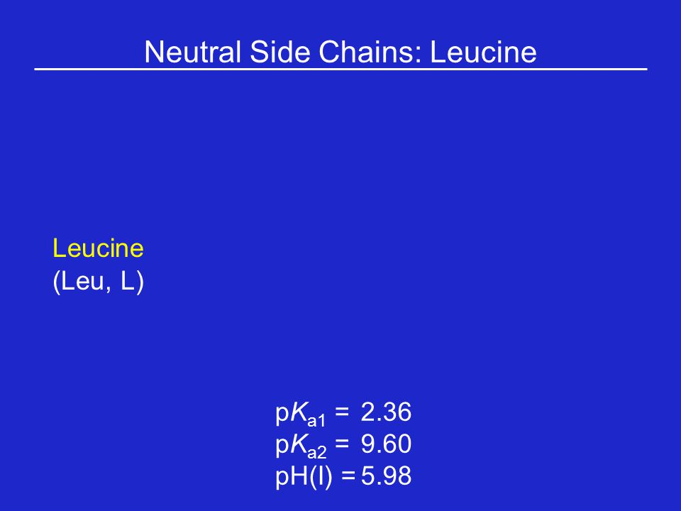 Neutral Side Chains: Leucine