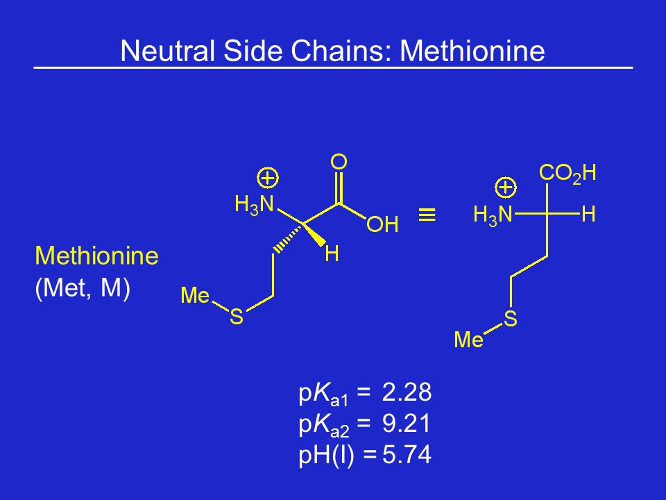 Neutral Side Chains: Methionine