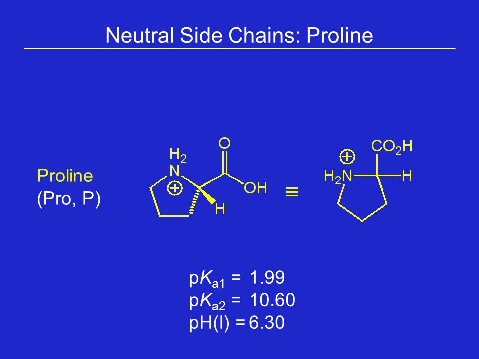 Neutral Side Chains: Proline