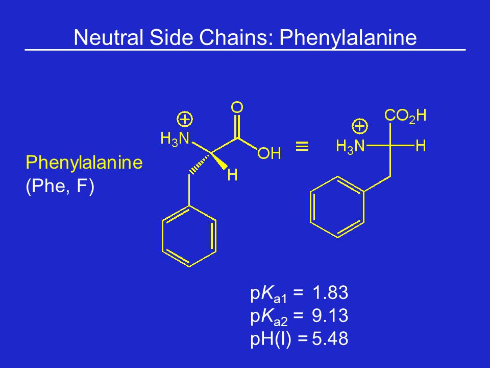 Neutral Side Chains: Phenylalanine