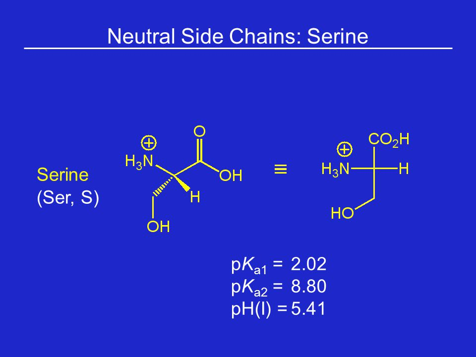 Neutral Side Chains: Serine