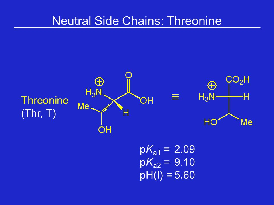 Neutral Side Chains: Threonine