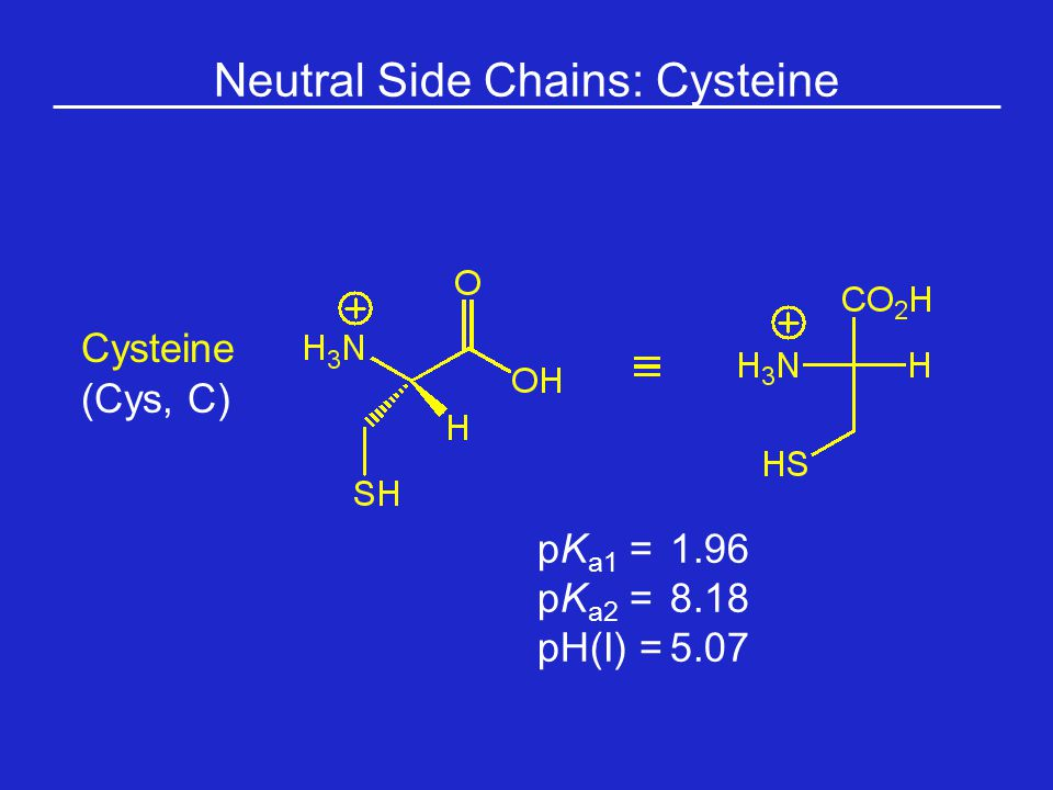 Neutral Side Chains: Cysteine