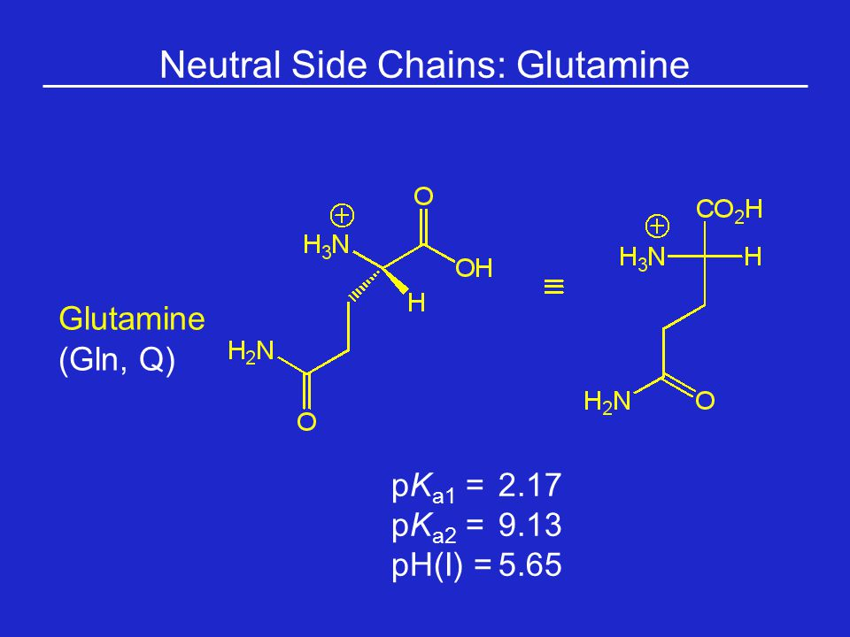 Neutral Side Chains: Glutamine
